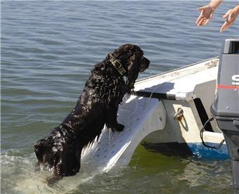 Super Skamper Ramp on Boat Transom